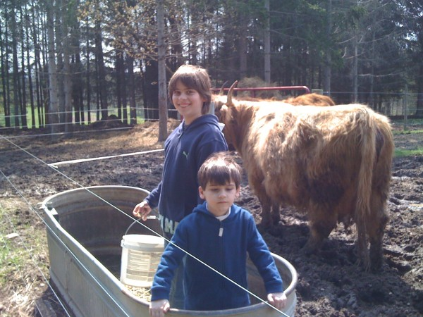 Kieran and Declan in a trough