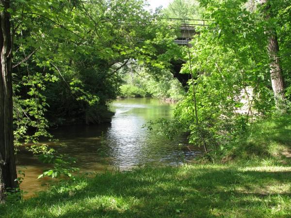 Mill Creek Winding Through Dexter