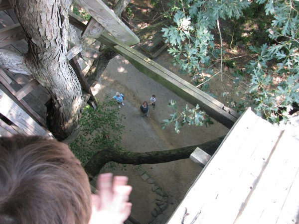 Minister's Tree House - Looking Down at Owen & Mom