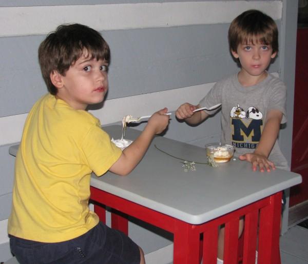 Declan and Owen's Custard