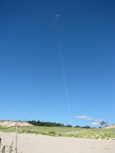 Our Beach Walking Kite